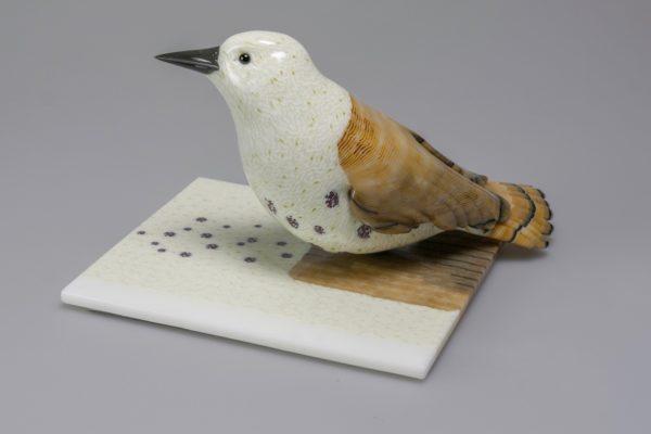 Avian Pair 0617